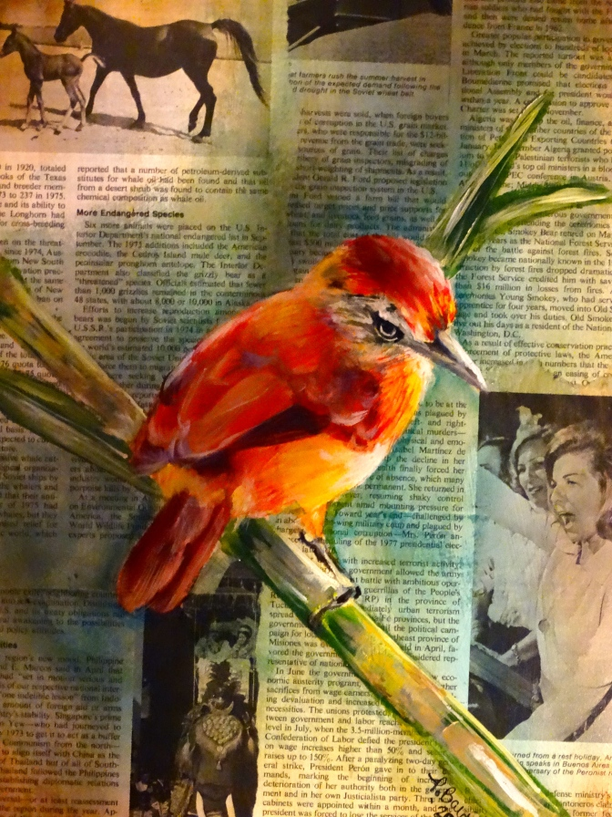 "Acrylic Painting on historically significant and vintage newspaper from 1976- event that begin with an ""A"". Argentina Red Comet Bird."
